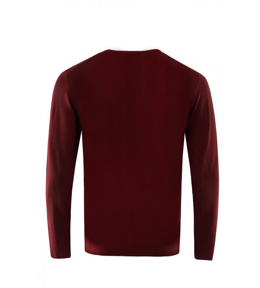 Pullover mit V-Ausschnitt T1005-359 back
